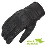 BlackB-Jackal